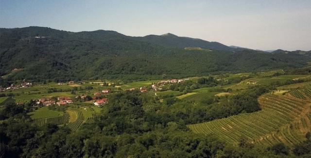 Vipava valley vipavska dolina Rahela cebron